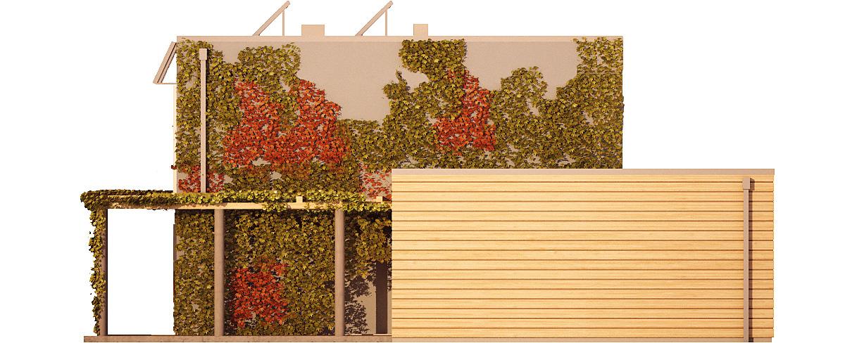 Projekt domu ZIELONY Domy Czystej Energii elewacja boczna